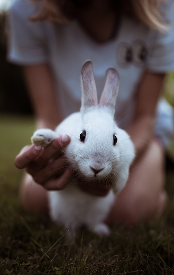 Keep Your Routine Cruelty-Free